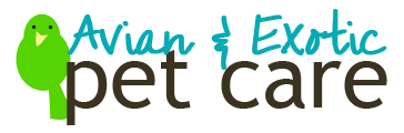 Avian and Exotic Pet Care profile image.