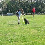 Pawsome Training and Behaviour profile image.