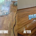 PureClean Carpet Cleaning profile image.