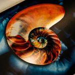 ColorCal profile image.
