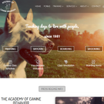 Liberty Fox Web Design profile image.