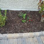 Quality Driveways Dublin profile image.