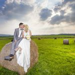 Angela Halpin Photography profile image.