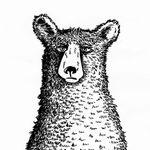 Sally Barnett profile image.