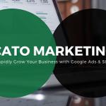 Cato Marketing profile image.