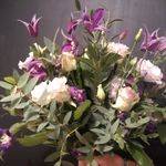 Marcelle Wedding and event flowers  profile image.