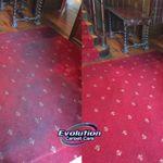 Evolution Carpet Care profile image.