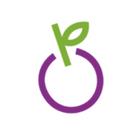 VerriBerri logo