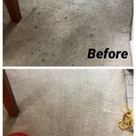 Dev Carpet cleaning profile image.
