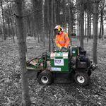 Tree Stump Solutions profile image.