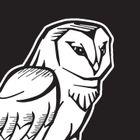Tinkering Owl