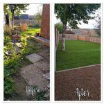 Movito Landscaping & Garden Design profile image.