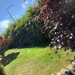 G&A Gardening&landscaping profile image.