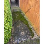 JNS Sparkles Cleaning Services profile image.