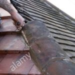 HMB Flat roofing specialist profile image.