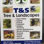 T&S tree and landscapes profile image.