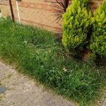 Northans home improments and landscapes profile image.