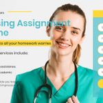 Nursing Assignment Writers profile image.