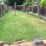 AM garden maintenance profile image.