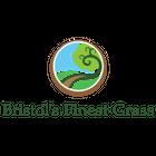 Bristol's Finest Grass