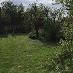 Four oaks profile image.