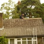 The Roof Doctor profile image.