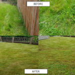 Greener Lawn profile image.