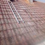 Tm home improvement services profile image.