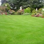 Leigh's Garden Care profile image.