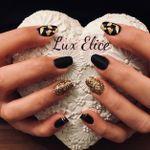 Lux Elice profile image.