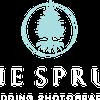 Blue Spruce Photography profile image