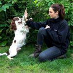 Go Fetch Training profile image.