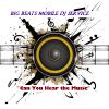 Big Beatz Dj entertainment  profile image