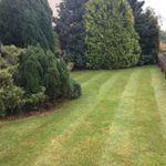 Greenbay Grounds Maintenance profile image.