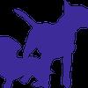 Dogworthy Training and Behaviour profile image