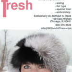 SEO-Tool-Store,com profile image.