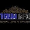 TRIUM INFOSOLUTIONS LTD profile image