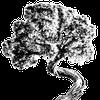Best Slope Designs profile image