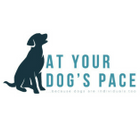 At Your Dog's Pace logo