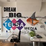 Telsa Media  profile image.