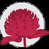 Amaranth Floral Studio profile image