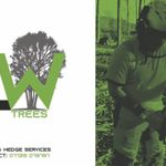 CW Tree & Hedge  profile image.