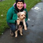 Suzanne's dog walking and pet let out service