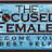 The Focused Female profile image