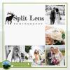 Split Lens Photography profile image