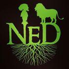 Native Earth Designs
