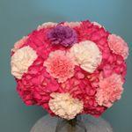 Orlando Florist profile image.