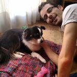 Rob Dog lover sitter profile image.