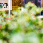 PCP Market Research profile image.