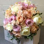 Blossom Florists profile image.